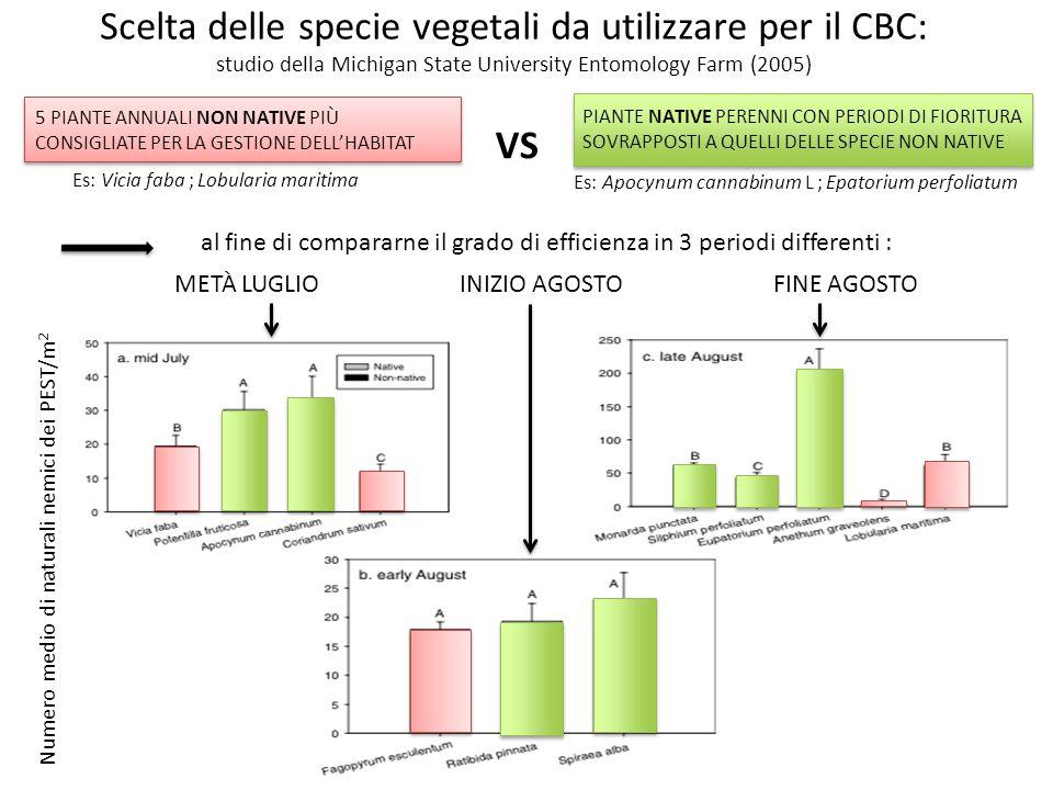 Scelta delle specie vegetali da utilizzare per il CBC: