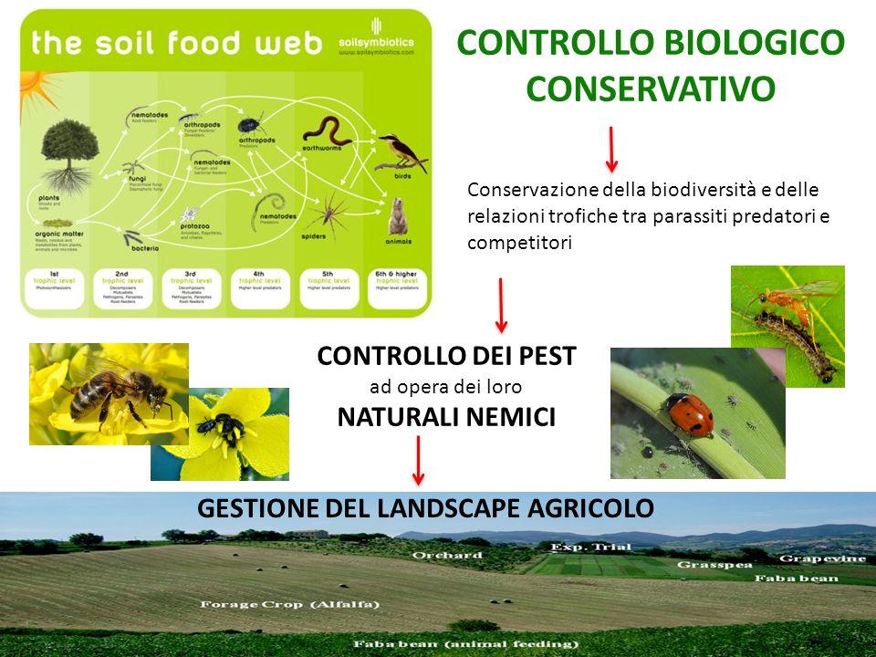 CONTROLLO BIOLOGICO CONSERVATIVO