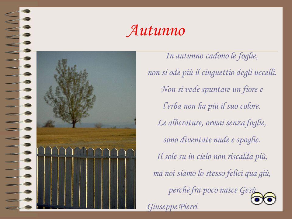 Autunno In autunno cadono le foglie,