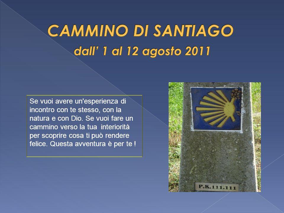 CAMMINO DI SANTIAGO dall' 1 al 12 agosto 2011