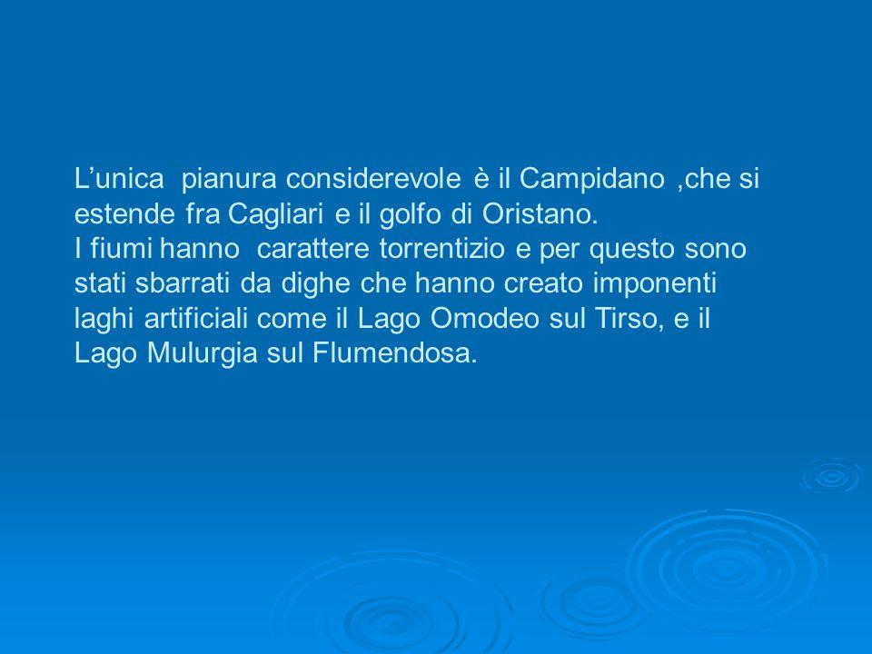 L'unica pianura considerevole è il Campidano ,che si estende fra Cagliari e il golfo di Oristano.