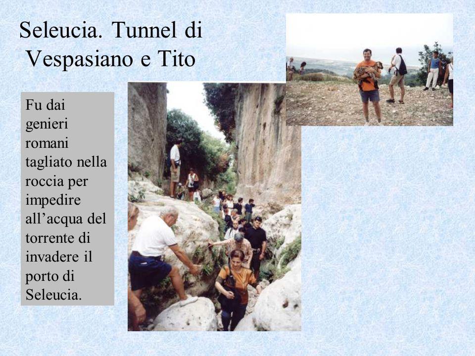 Seleucia. Tunnel di Vespasiano e Tito