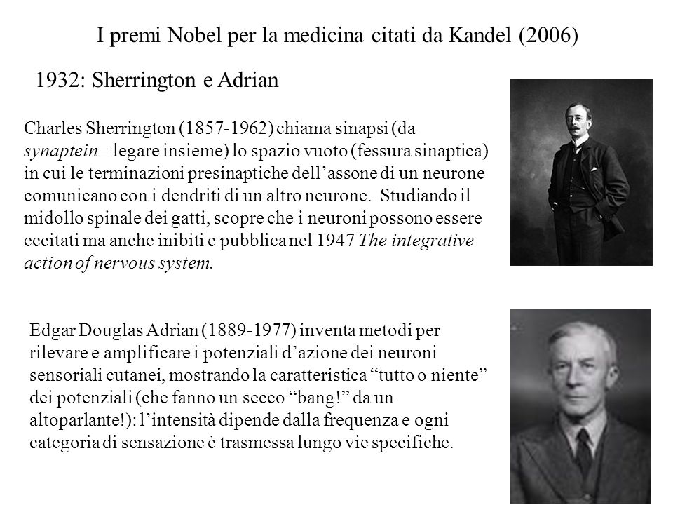 I premi Nobel per la medicina citati da Kandel (2006)