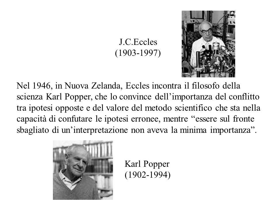 J.C.Eccles (1903-1997)