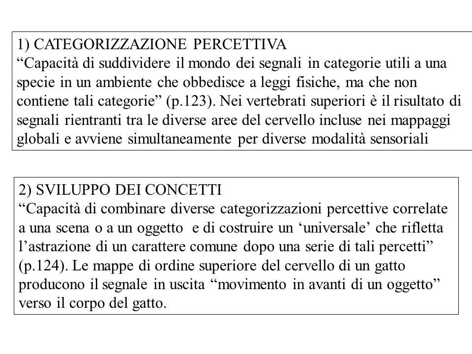 1) CATEGORIZZAZIONE PERCETTIVA
