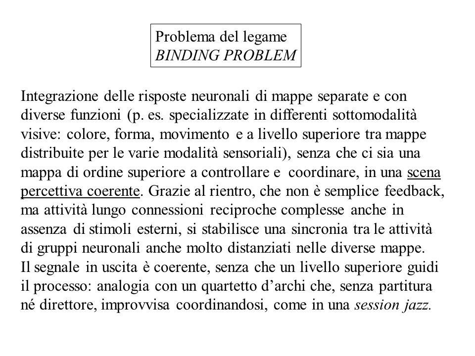 Problema del legame BINDING PROBLEM.