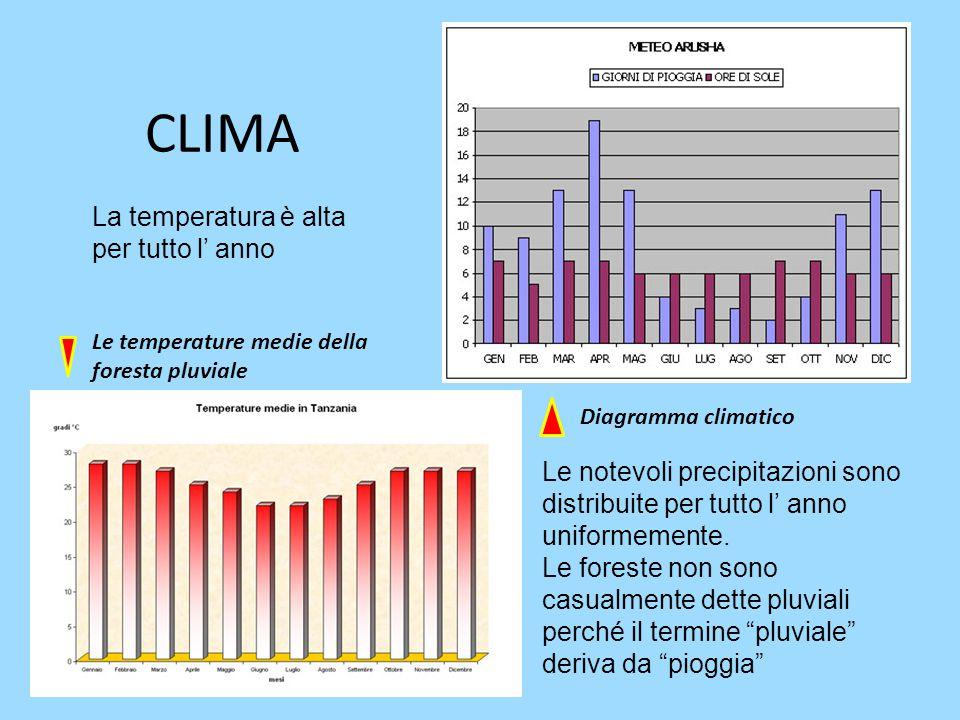CLIMA La temperatura è alta per tutto l' anno