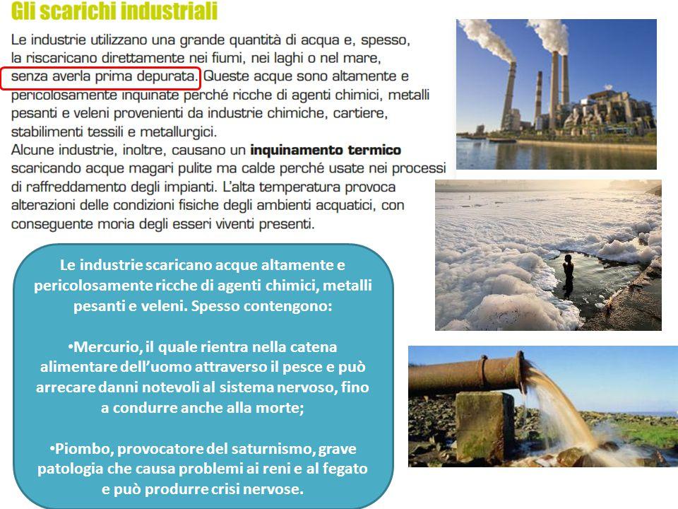 Le industrie scaricano acque altamente e pericolosamente ricche di agenti chimici, metalli pesanti e veleni. Spesso contengono: