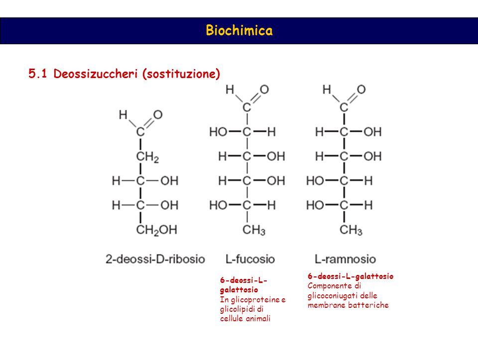 5.1 Deossizuccheri (sostituzione)