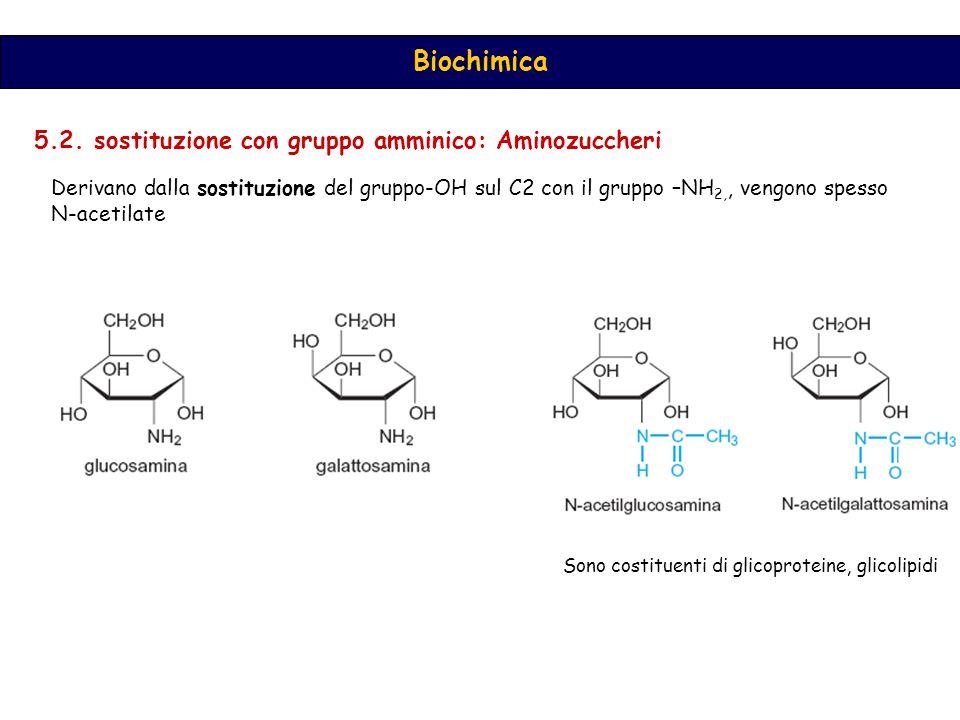 5.2. sostituzione con gruppo amminico: Aminozuccheri