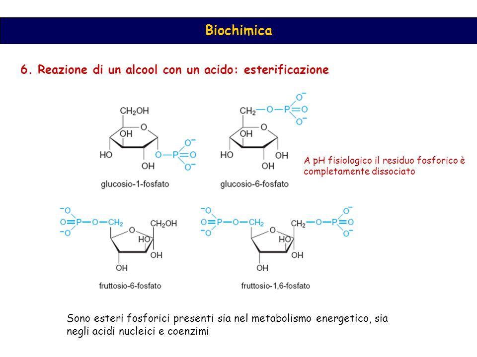 6. Reazione di un alcool con un acido: esterificazione