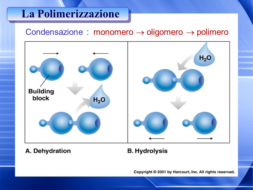 La Polimerizzazione Condensazione : monomero  oligomero  polimero