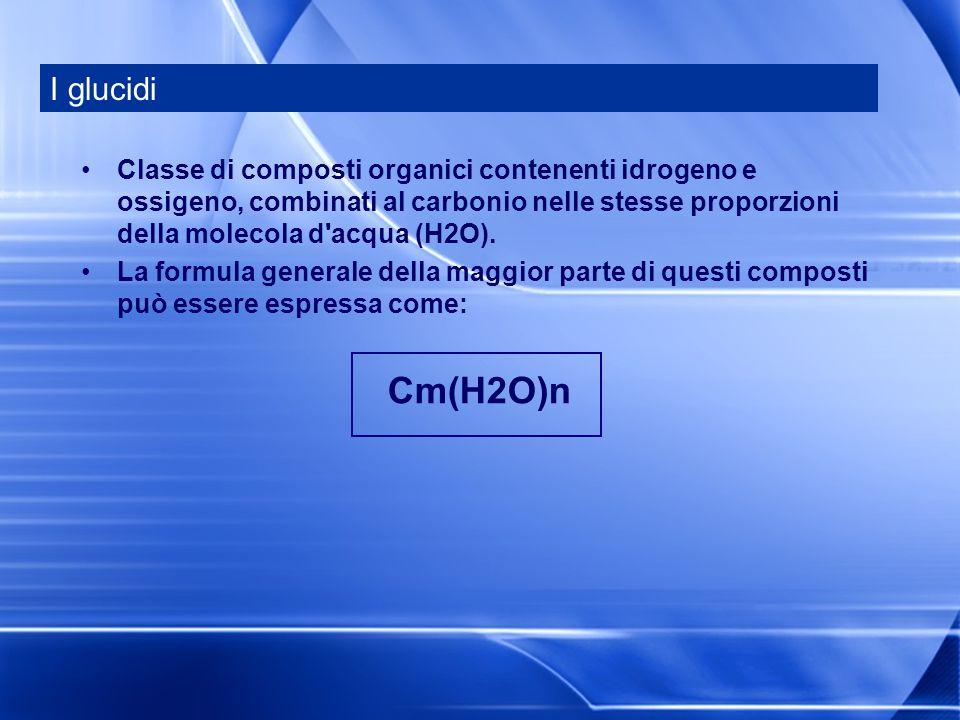 I glucidi Classe di composti organici contenenti idrogeno e ossigeno, combinati al carbonio nelle stesse proporzioni della molecola d acqua (H2O).