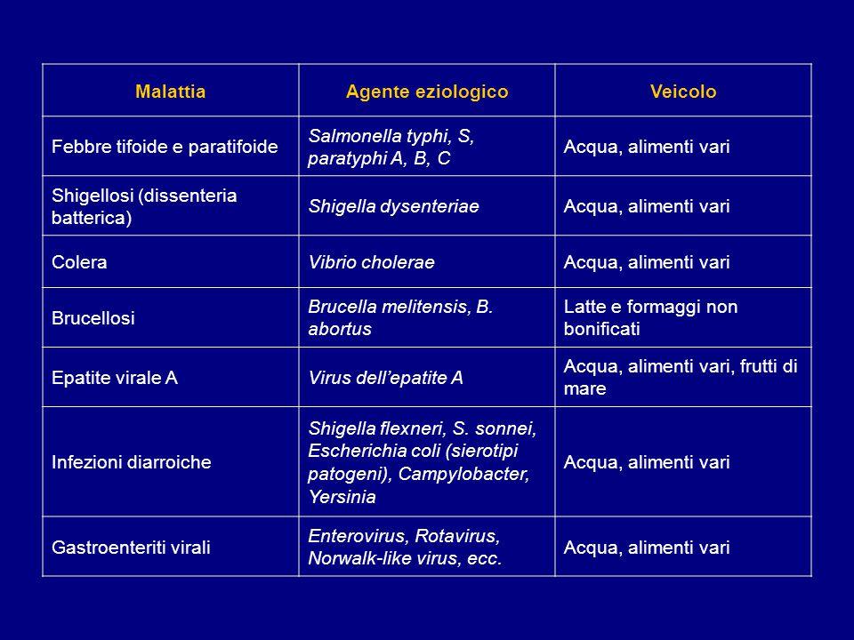 Malattia Agente eziologico. Veicolo. Febbre tifoide e paratifoide. Salmonella typhi, S, paratyphi A, B, C.