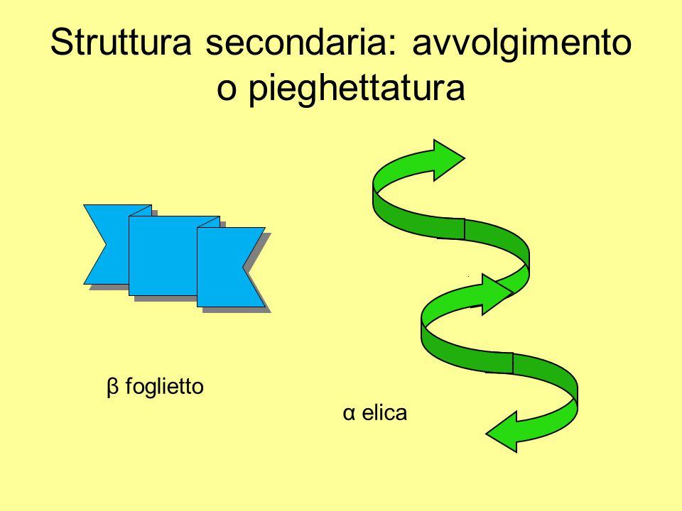 Struttura secondaria: avvolgimento o pieghettatura