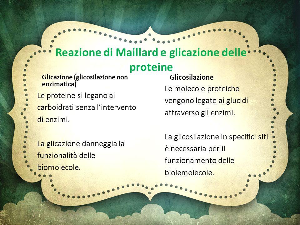 Reazione di Maillard e glicazione delle proteine