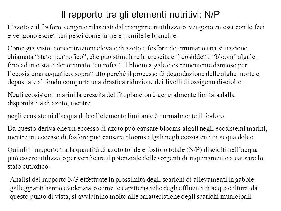 Il rapporto tra gli elementi nutritivi: N/P