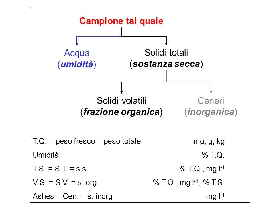 Campione tal quale Acqua (umidità) Solidi totali (sostanza secca)