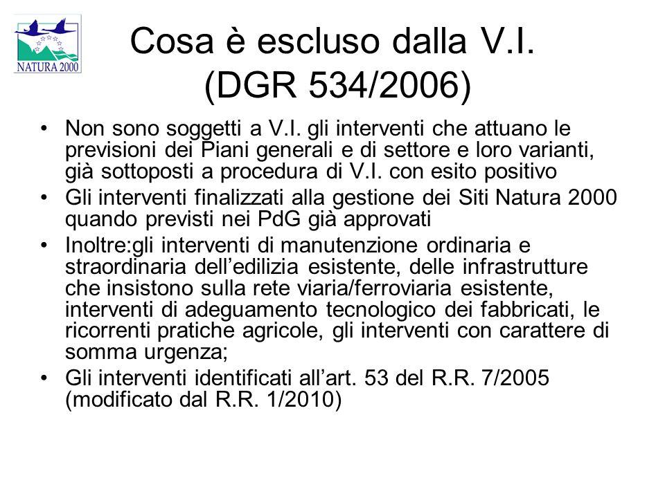Cosa è escluso dalla V.I. (DGR 534/2006)