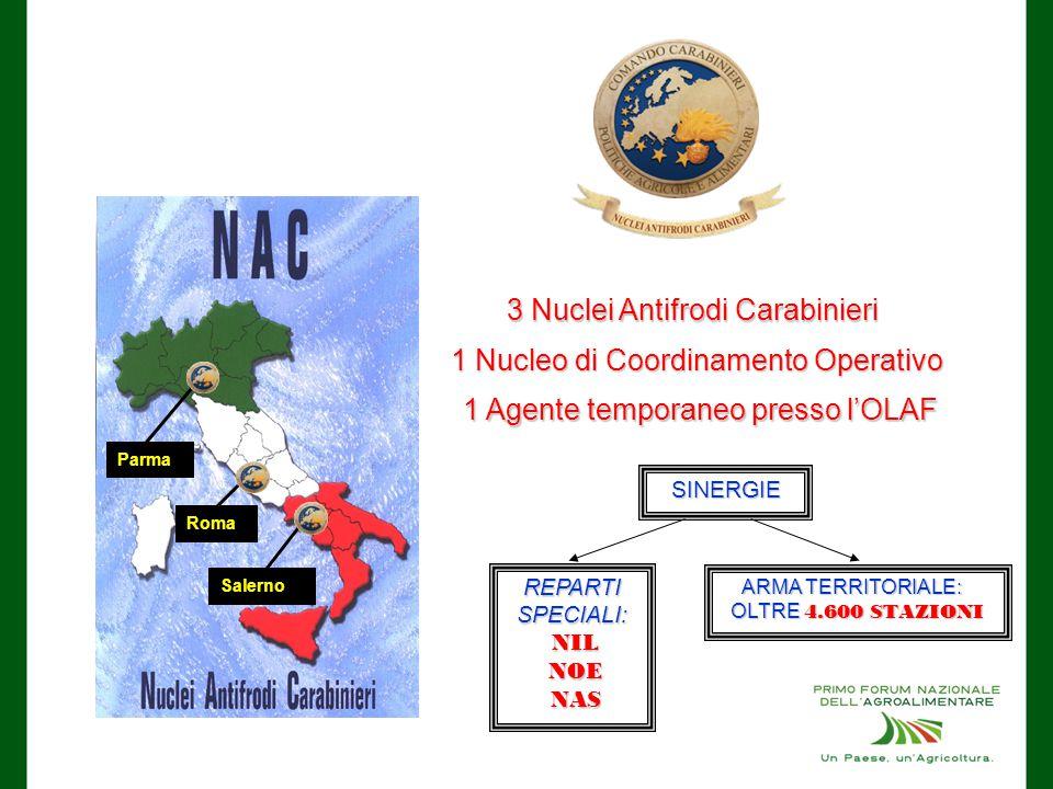 3 Nuclei Antifrodi Carabinieri