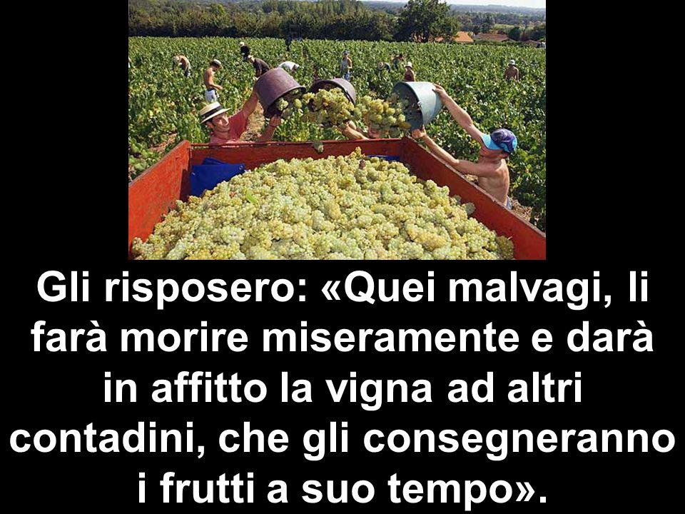 Gli risposero: «Quei malvagi, li farà morire miseramente e darà in affitto la vigna ad altri contadini, che gli consegneranno i frutti a suo tempo».