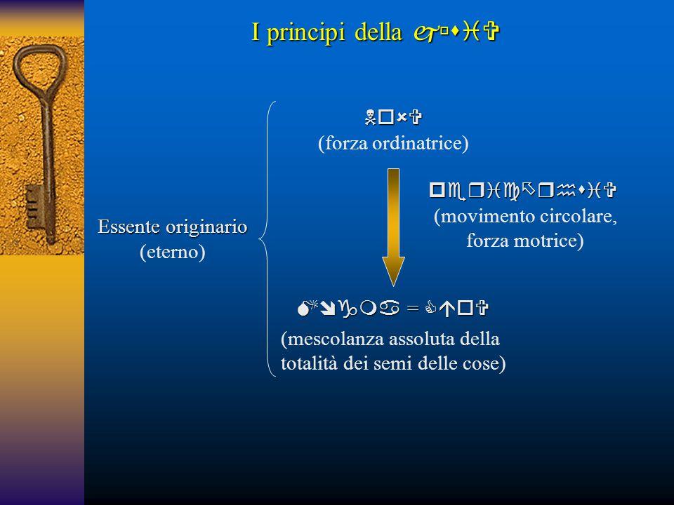 I principi della   (forza ordinatrice) 