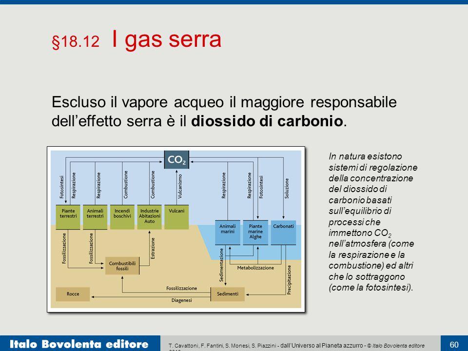 §18.12 I gas serra Escluso il vapore acqueo il maggiore responsabile dell'effetto serra è il diossido di carbonio.