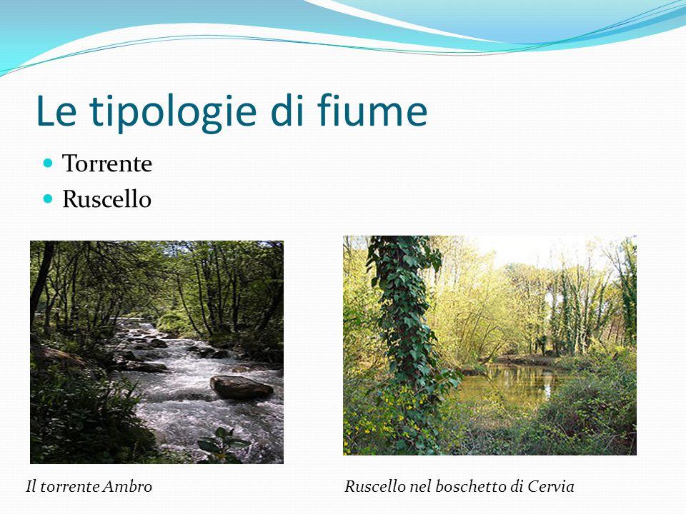 Le tipologie di fiume Torrente Ruscello Il torrente Ambro