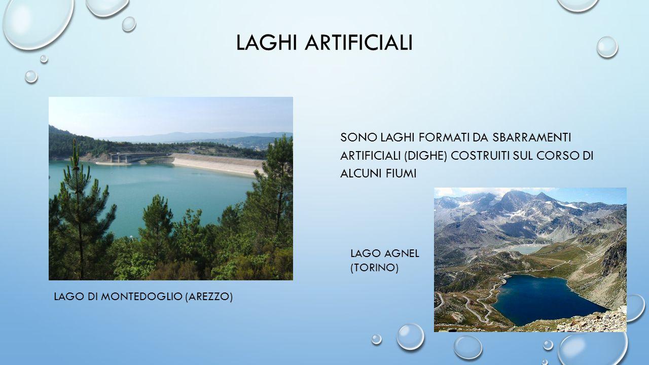 LAGHI ARTIFICIALI sono laghi formati da sbarramenti artificiali (dighe) costruiti sul corso di alcuni fiumi.