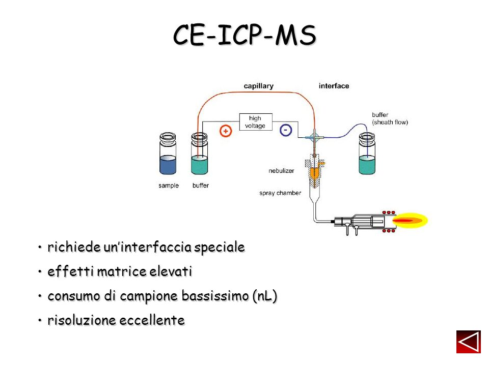 CE-ICP-MS richiede un'interfaccia speciale effetti matrice elevati