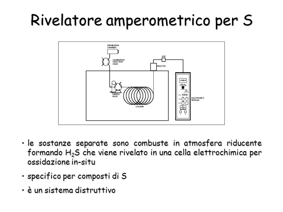 Rivelatore amperometrico per S