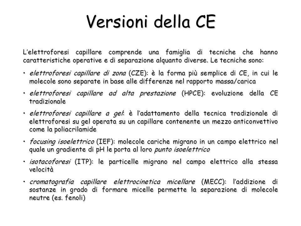 Versioni della CE