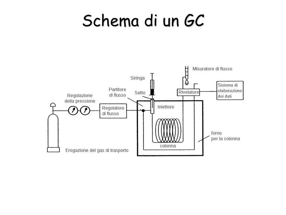 Schema di un GC