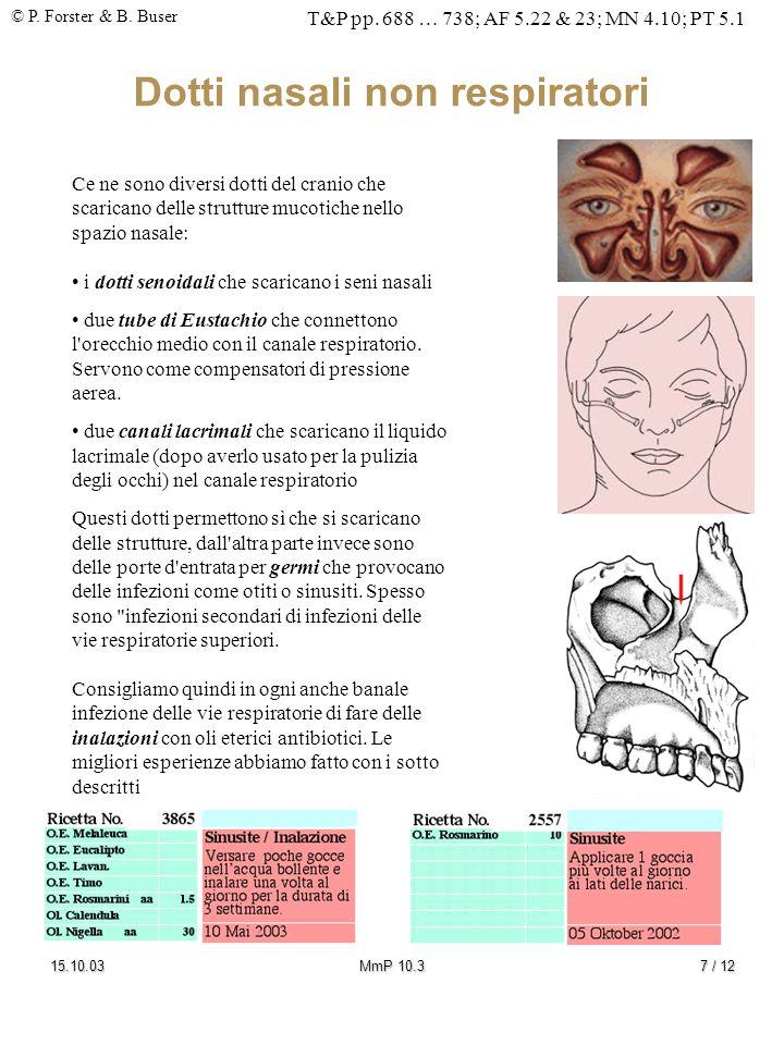 Dotti nasali non respiratori