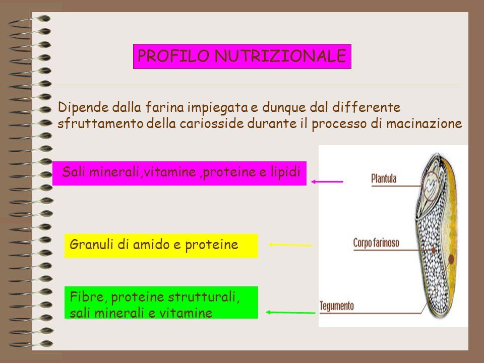 PROFILO NUTRIZIONALE Dipende dalla farina impiegata e dunque dal differente sfruttamento della cariosside durante il processo di macinazione.