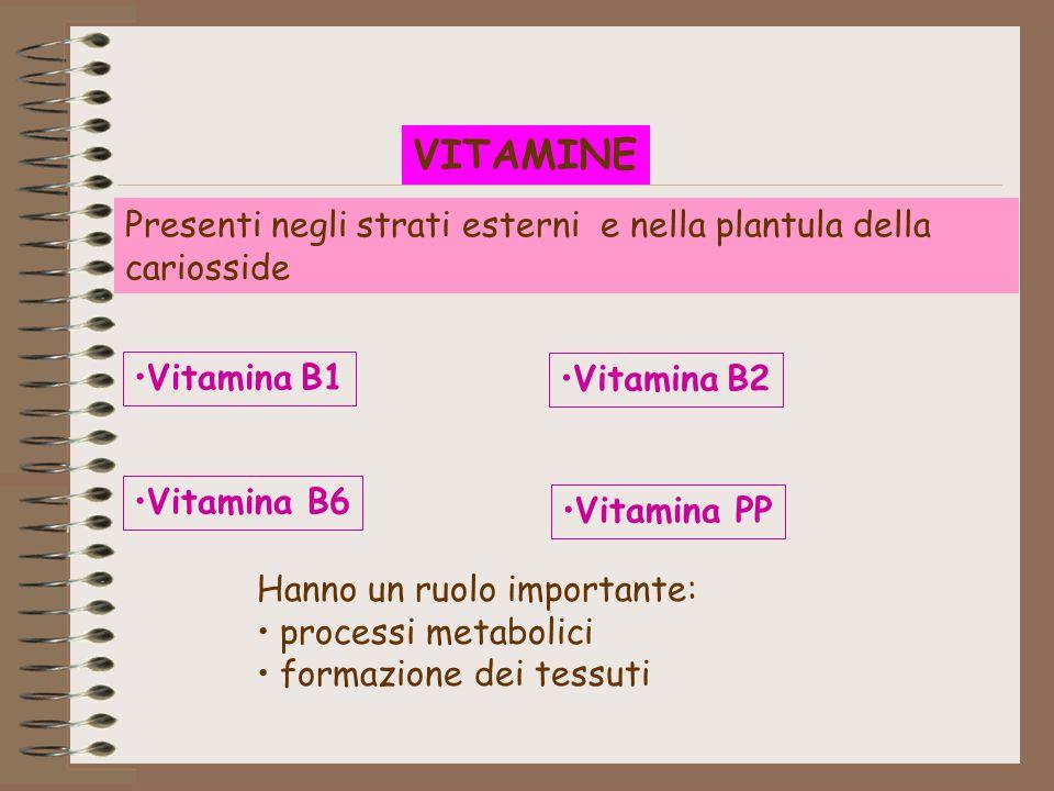 VITAMINE Presenti negli strati esterni e nella plantula della cariosside. Vitamina B1. Vitamina B2.