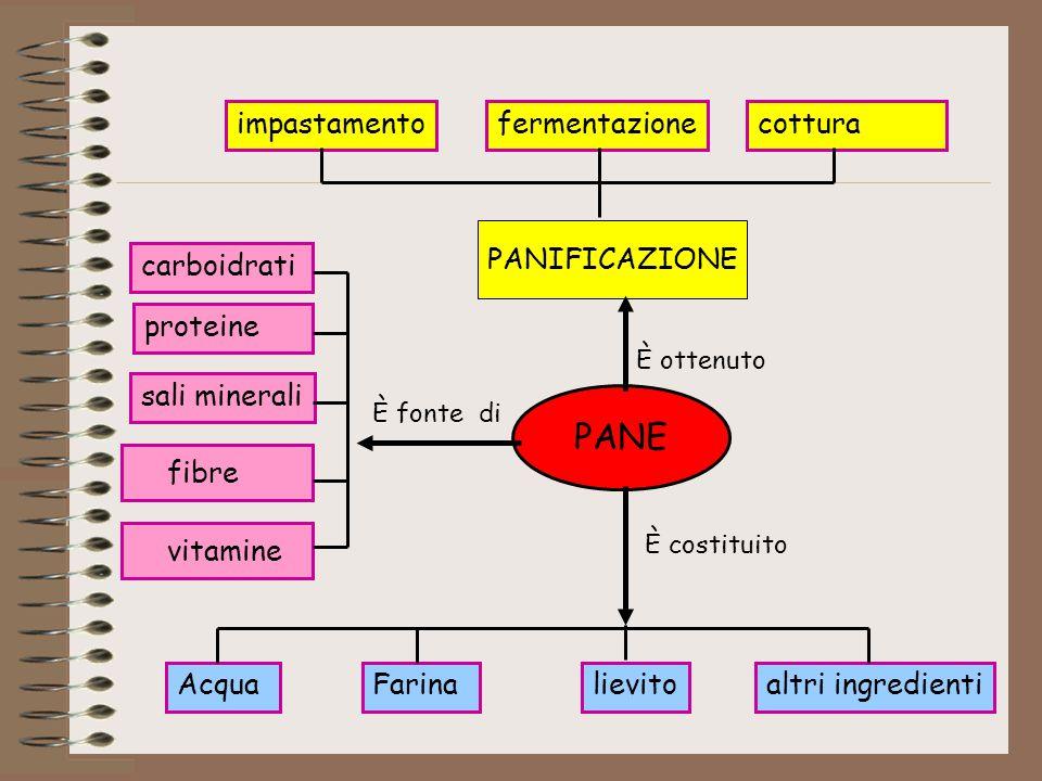 PANE fibre vitamine impastamento fermentazione cottura PANIFICAZIONE