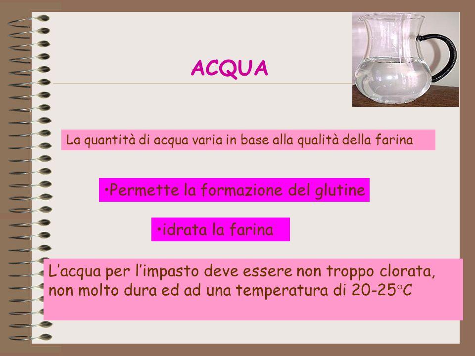ACQUA Permette la formazione del glutine idrata la farina