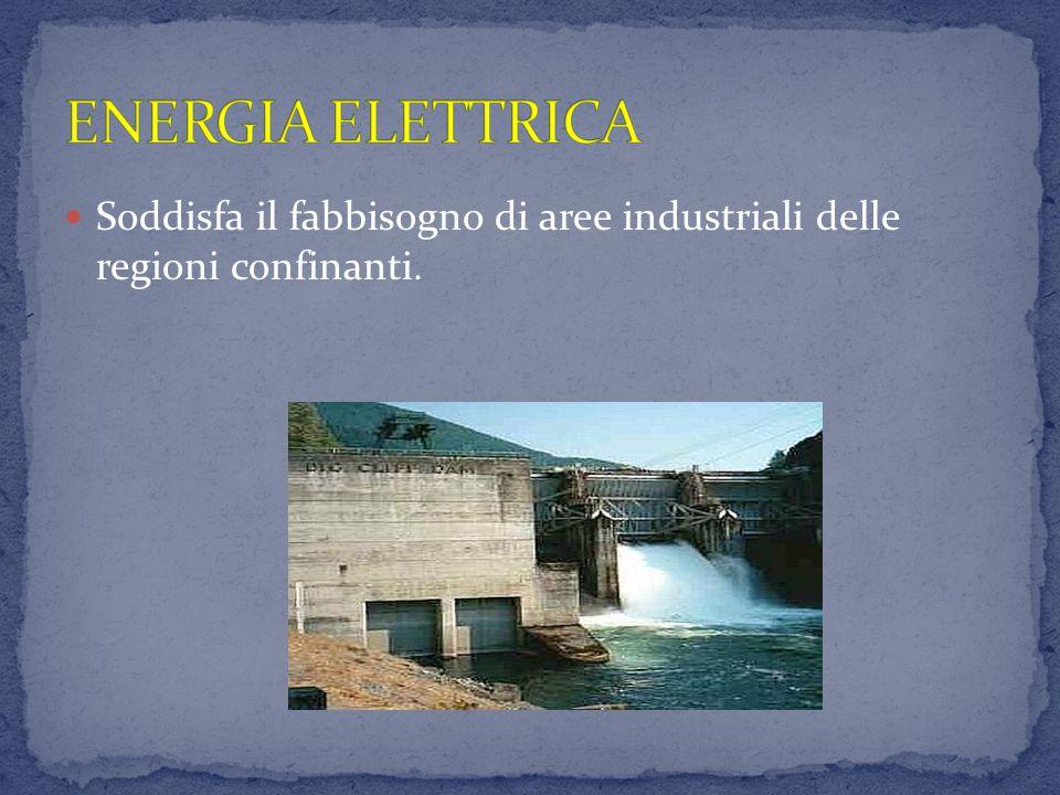 ENERGIA ELETTRICA Soddisfa il fabbisogno di aree industriali delle regioni confinanti.