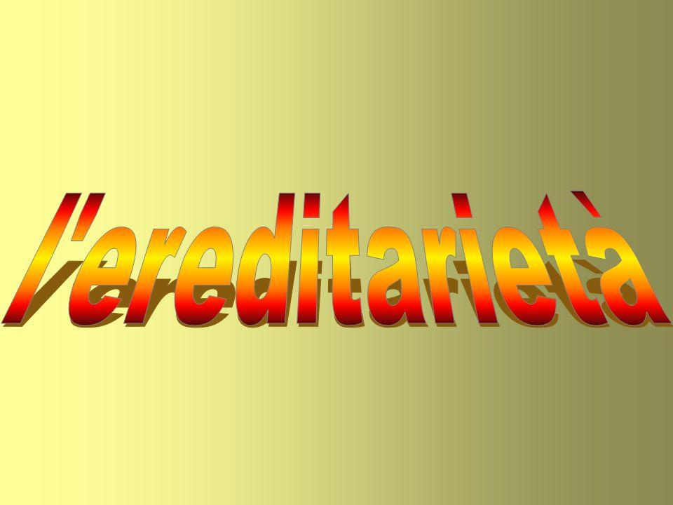 l ereditarietà