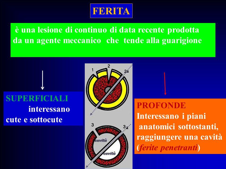 FERITA è una lesione di continuo di data recente prodotta