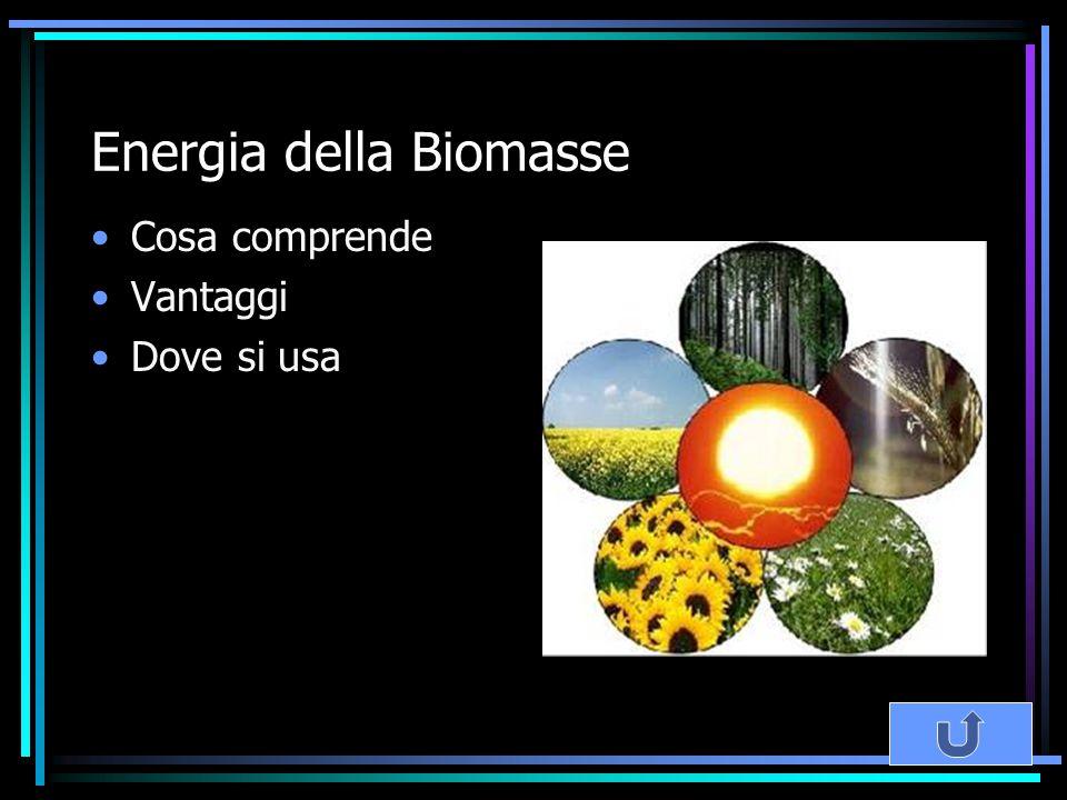 Energia della Biomasse