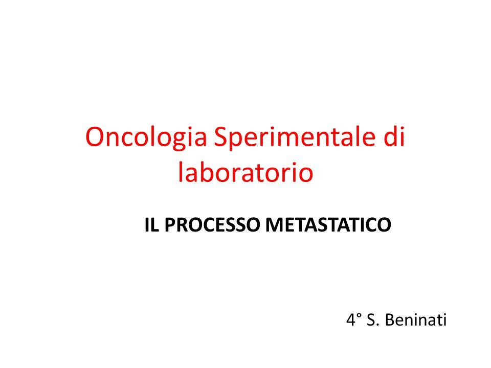 Oncologia Sperimentale di laboratorio