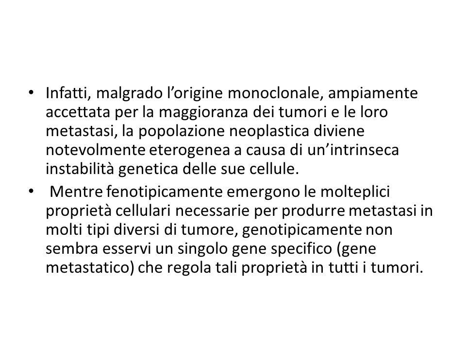 Infatti, malgrado l'origine monoclonale, ampiamente accettata per la maggioranza dei tumori e le loro metastasi, la popolazione neoplastica diviene notevolmente eterogenea a causa di un'intrinseca instabilità genetica delle sue cellule.