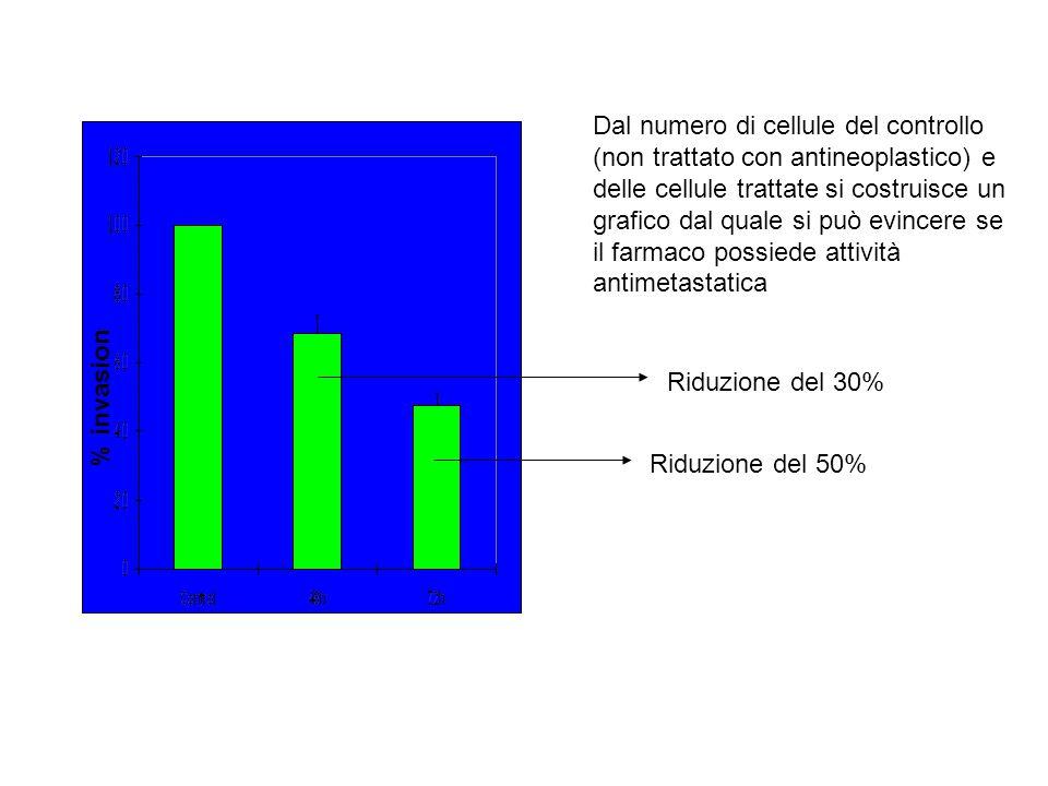 Dal numero di cellule del controllo (non trattato con antineoplastico) e delle cellule trattate si costruisce un grafico dal quale si può evincere se il farmaco possiede attività antimetastatica