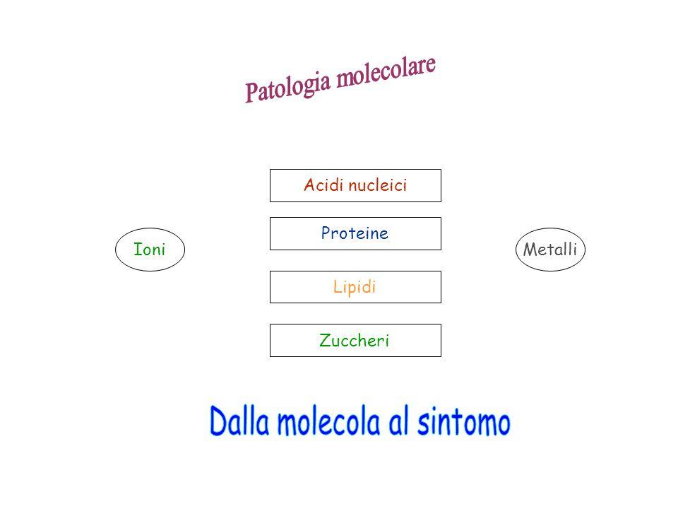 Dalla molecola al sintomo