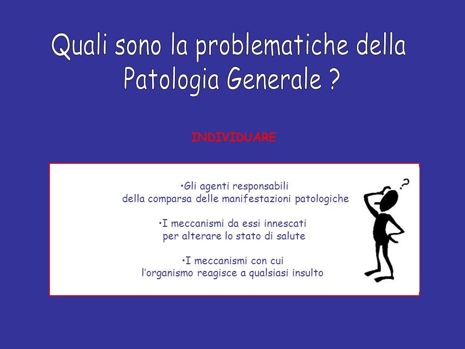 Quali sono la problematiche della Patologia Generale