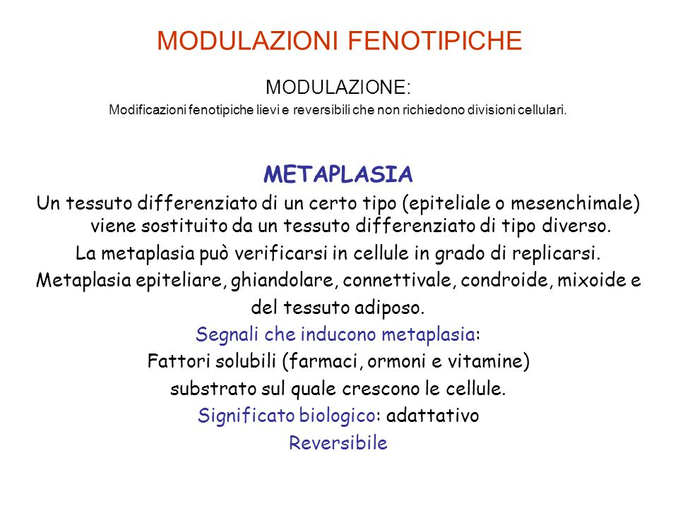 MODULAZIONI FENOTIPICHE