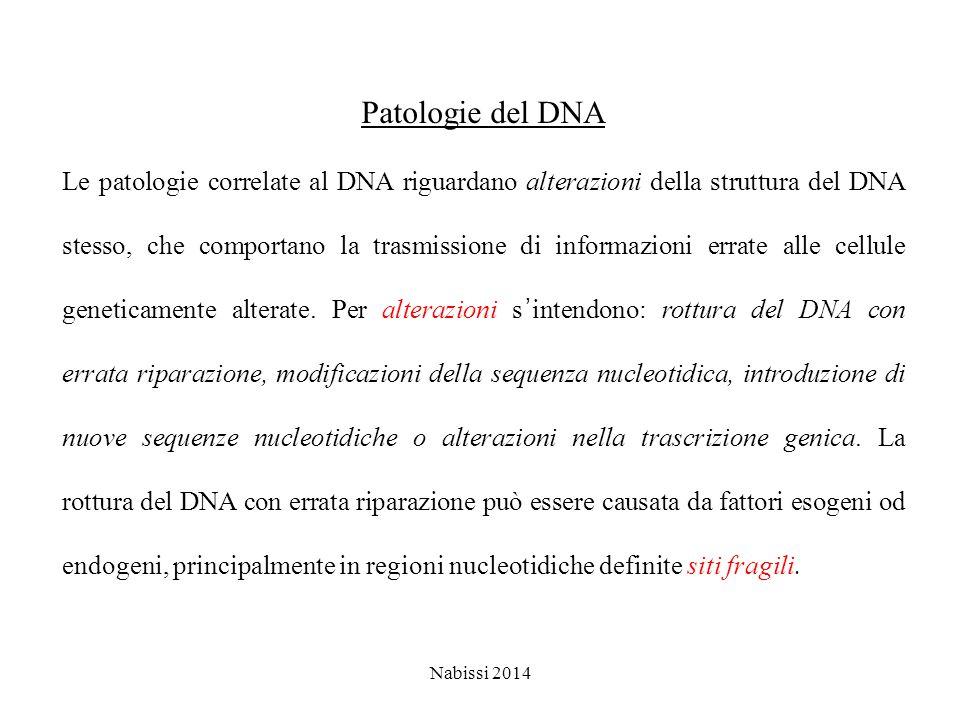 Patologie del DNA