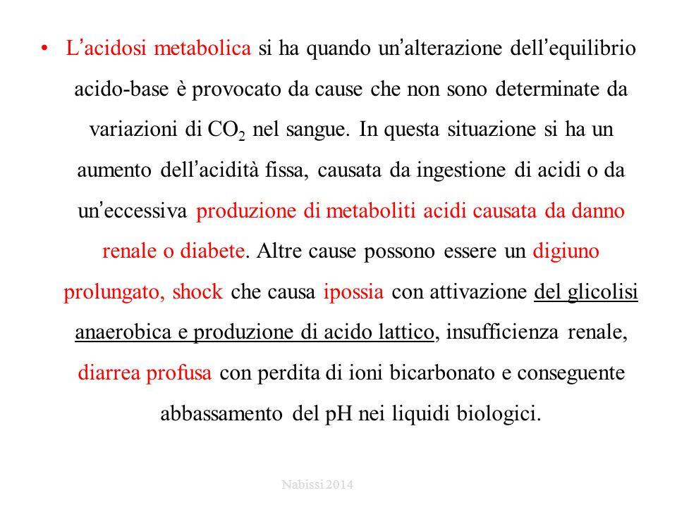 L'acidosi metabolica si ha quando un'alterazione dell'equilibrio acido-base è provocato da cause che non sono determinate da variazioni di CO2 nel sangue. In questa situazione si ha un aumento dell'acidità fissa, causata da ingestione di acidi o da un'eccessiva produzione di metaboliti acidi causata da danno renale o diabete. Altre cause possono essere un digiuno prolungato, shock che causa ipossia con attivazione del glicolisi anaerobica e produzione di acido lattico, insufficienza renale, diarrea profusa con perdita di ioni bicarbonato e conseguente abbassamento del pH nei liquidi biologici.